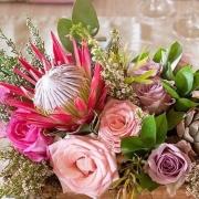 flowers, protea - Heatherbell\