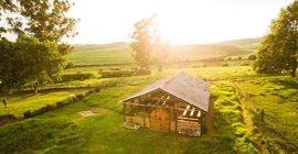 Corrie Lynn Farm