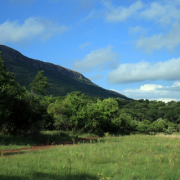 bushveld - Leopard Lodge