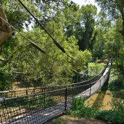 drawbridge, river