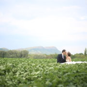 bride and groom, field