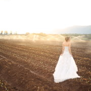 bride, field, wedding dress