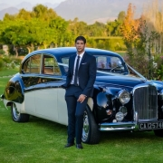 car, suit - Classic Cats