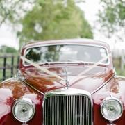 car - Classic Cats