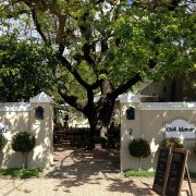 winelands - Cafe Felix