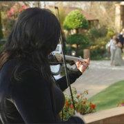 live entertainment - Urban Strings