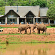 safari - Askari Game Lodge & Spa