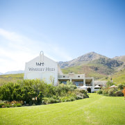 garden, mountain, winelands