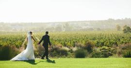 L'Huguenot Vineyards - Val de Vie Estate