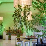 hanging greenery - Event Architect