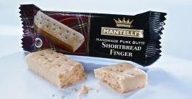 Mantelli's