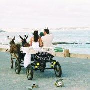 horse cart - Arniston Spa Hotel