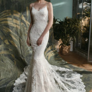 lace, wedding dress, wedding dress, wedding dress - Brides Of Somerset
