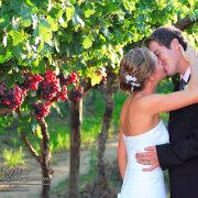 kiss, winelands