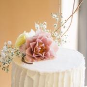 cake, flowers - Jenny B  Flowers
