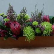 protea - Jenny B  Flowers