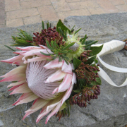 bouquet, protea - Jenny B  Flowers