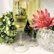 champagne glass, wedding gift - Succulent Oasis