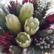 bouquet, proteas - Fabulous Fynbos