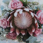 flowers, bouquet, protea - Fabulous Fynbos