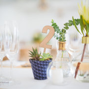 protea, table numbers - Fabulous Fynbos