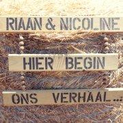 Nicoline Oosthuizen 0