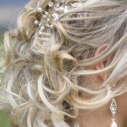 hair accessories, hairstyle