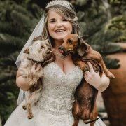 bride, dogs