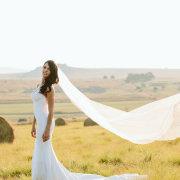 veil, wedding dress, wedding dress, wedding dress, wedding dress, wedding dress, wedding dress