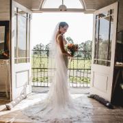 veil, wedding dress, wedding dress, wedding dress, wedding dress, wedding dress, wedding dress, wedding dress