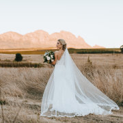 bride, countryside, veil