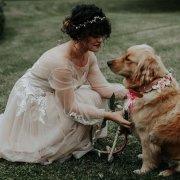 bride, dog