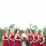 bride and bridesmaids, bridesmaids dresses, red