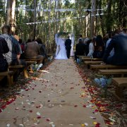 forest, forest ceremony
