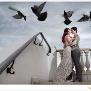 birds, wedding dress, wedding dress