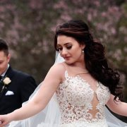 bride, wedding dresses, wedding dresses, wedding dresses