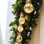 decor, greenery, naked bulbs