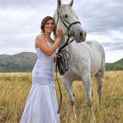 eurobride, horse