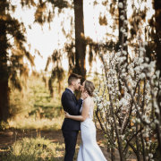 bride and groom, bride and groom, forest