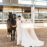 horse, veil, wedding dress, wedding dress