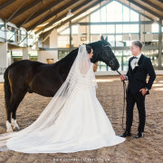 bride, groom, horse, veil