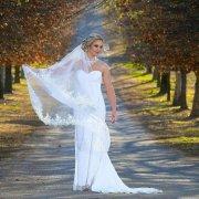 sweatheart, veil, wedding dress