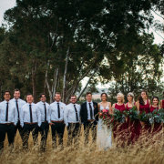 countryside, red, wedding party