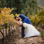 bride and groom, bride and groom, winelands