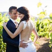 lace, wedding dress, vinyard