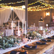 fairy lights, reception