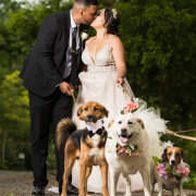 bride and groom, bride and groom, dogs, kiss, kiss