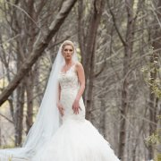 veil, wedding dresses, wedding dresses, wedding dresses, wedding dresses