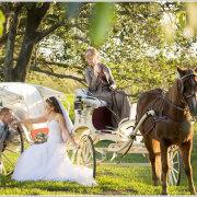 bride, groom, horse & carriage, kiss