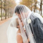 bride, veil, husban